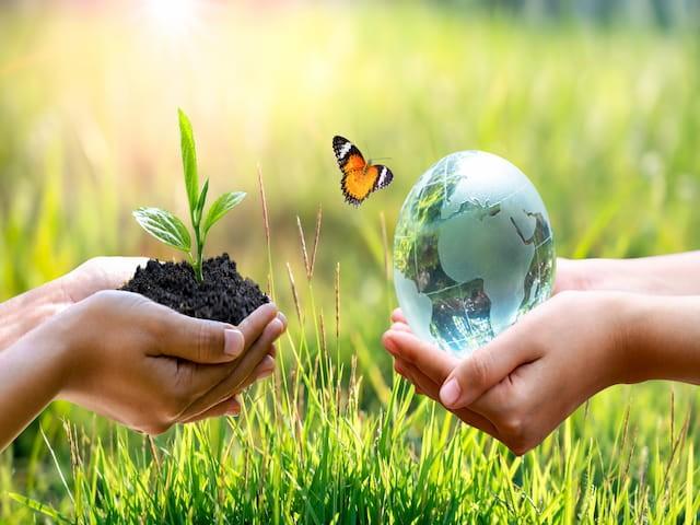 ISO 14001 - Sistem Manajemen Lingkungan | Enhaii Mandiri 186